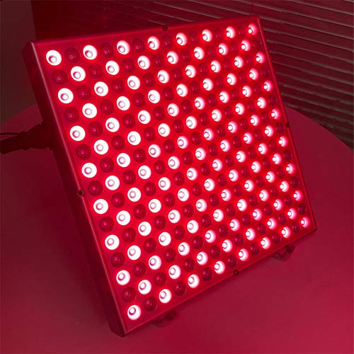 Find Discount LED Physiotherapy and Beauty Lamp Condition The Body to Circulate Blood and Whiten