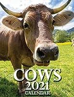 Cows 2021 Calendar