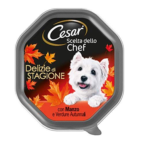 Cesar Elección del Chef Comida para Perro, delicias de Temporada con Ternera, Zumo, Patatas y Zanahorias, 150 g – 14 bandejas ⭐