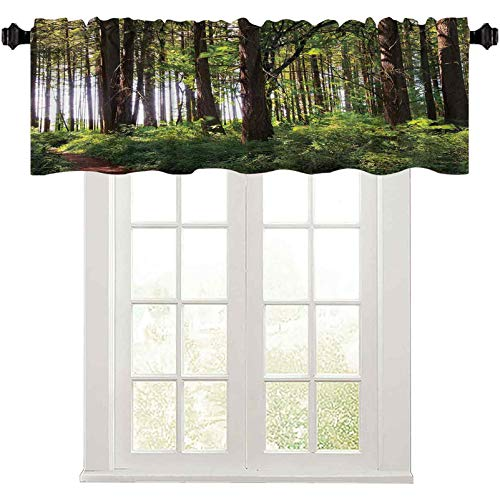 """Window Curtain Valance Pathway in a Shady Forest of Bushes and Thick Trunks Grass Unique Wild Life Scenery Windows Rod Pocket for Bedroom 36"""" W x 18"""" L Green Brown"""