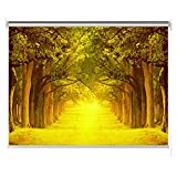 Estores Interior Cortina Enrollable Impermeable, Persianas de Dormitorio Sombra Enrollable, Paisaje Otoñal - Amarillo/Naranja, 60/80/100/120/140 cm de Ancho (Size : 100x160cm)
