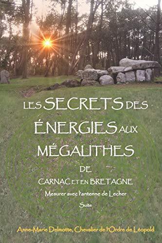 LES SECRETS DES ÉNERGIES AUX MÉGALITHES DE CARNAC ET EN BRETAGNE - Mesurer avec l'antenne de Lecher - Suite