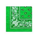 Novelty Paisley Cotton Bandanas - For Headband, Hairband, Hankerchief, Accessories (Lime Green)