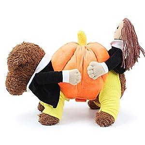 inséré dans everyway Creative Funny Pet Costume chaud pour chien Vêtements chiot Sucette avec de jolis tenant citrouille