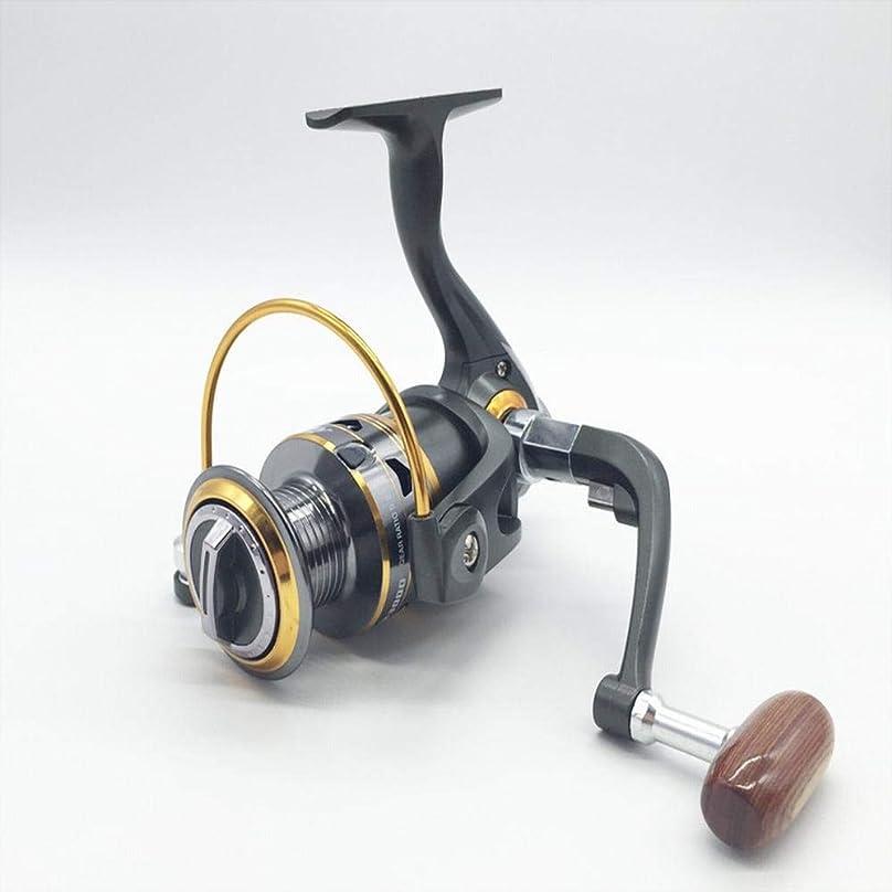 蒸留膨らませるメルボルン釣りリール 11軸シリーズフィッシングリールフィッシングラインスピニングホイールフィッシングホイールサンドパイパーホイール (Size : 5000)