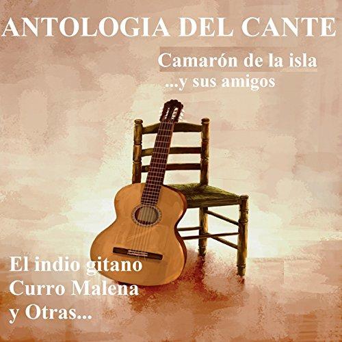 Antologia del Cante - Camarón de la Isla ...Y Sus Amigos