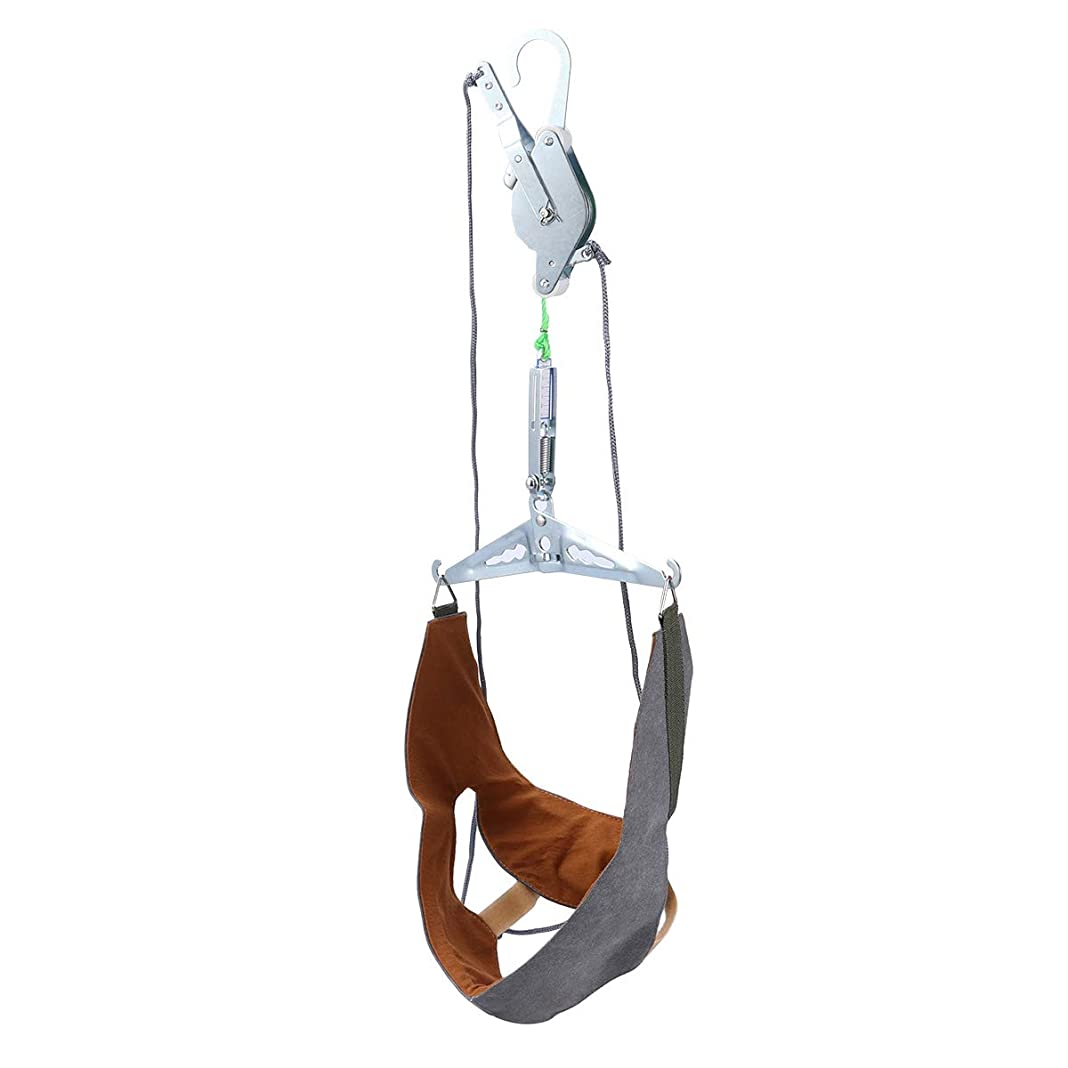リサイクルするプレーヤー幻滅するHealifty 家庭用 頚椎 牽引 頭痛 ストレッチ 吊り下げ式 首頸部 マッサージ 牽引装置 ネックサポート 頚椎首ガード保護スリーブ ネックホルダー(ランダムカラー)