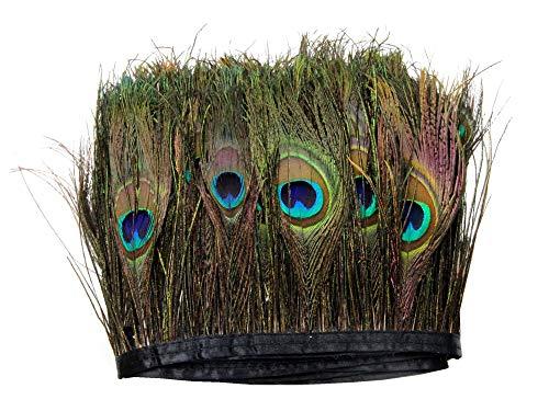 PANAX Echte Pfauenfedern auf 200cm Stoffstreifen - ca. 15-20cm Federnlänge, Fasching Karneval, Dekoration, Basteln, Kostüme, Variante AB