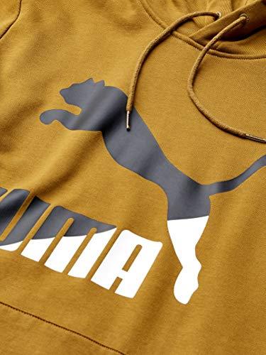 PUMA Men's Classics Logo Hoody