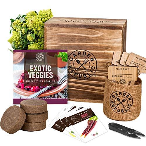 Indoor Garden Vegetable Seed Starter Kits - DIY Grow Your Own Vegetable Growing Kits
