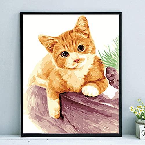 Xpboao Pintura de Bricolaje por números - Gato Dorado Animal - para Adultos y niños Kits de Regalo de Pintura al óleo de Bricolaje - Arte decoración del hogar - 40x50cm - Sin Marco