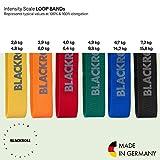 Zoom IMG-1 blackroll loop band set di