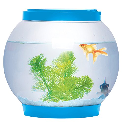 Sentik, Schreibtisch-Aquarium aus Glas, rund, mit LED-Beleuchtung, 5Liter, blau