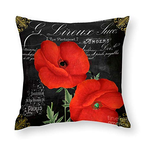 YYone Decorative Throw Pillow Covers Vintage Pattern Fleur Du Jour Poppy Decorative Throw Pillow Case Cushion Cover Cotton For Sofa Couch Chair Seat,Square 20 X 20 Inches