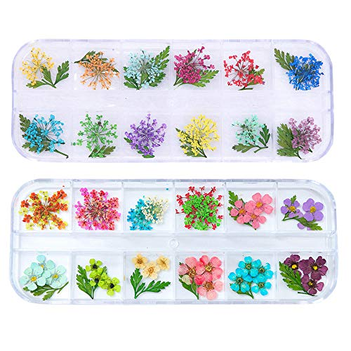 Vero Fiori Secchi Decorazione Adesivi Nail Art 3D fiori Conservati Fai da te Suggerimenti Manicure Decor Accessori Misti (2 Scatole)