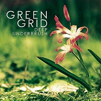 Deep Underbrush