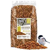 festa degli uccelli - miscela di insetti premium 2,5 litri i vermi della farina essiccati, larve di insetti e gamarus per uccelli i vermi della farina essiccati, becchime