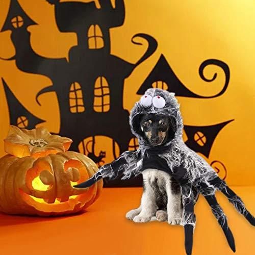 Disfraz de araa para perro de Halloween, disfraz de araa de Halloween, disfraz de perro de araa, alas de perro, disfraz de fiesta para mascotas grande y mediano cosplay disfraz de Halloween