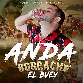 Anda Borracho el Buey