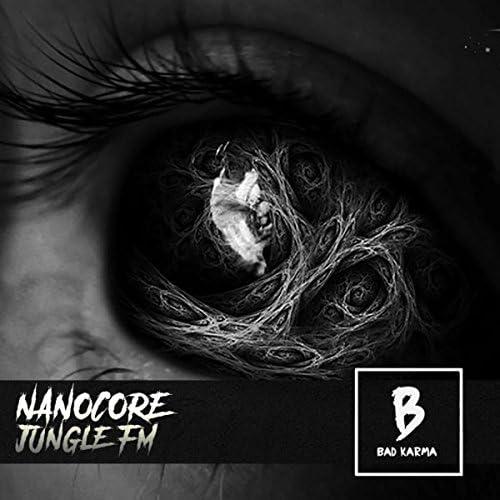 Nanocore