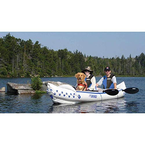 Can Dogs Go On Inflatable Boats Or Kayaks?