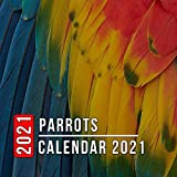 Parrots Calendar 2021: 12 Month Mini Calendar from Jan 2021 to Dec 2021, Cute Gift Idea   Pictures in Every Month