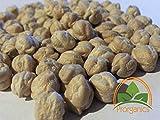Las Semillas de germinación: 100 Semillas de garbanzo orgánicos por Prorganics