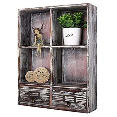 Rustic Torched Wood Wall Mounted Shadow Box w/Cubby Shelving, 2 Drawers and Label Holders, Dark Brown