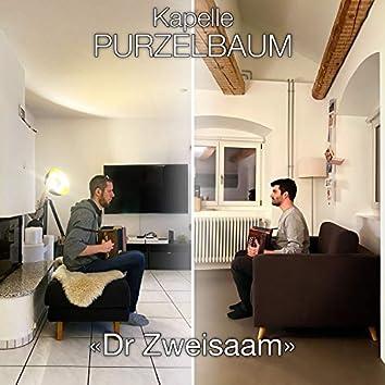 Dr Zweisaam