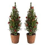 BOTANICLY | Árbol de Navidad | Picea glauca en maceta de madera natural con lazos rojos | 65 cm | Set de 2 árboles de navidad