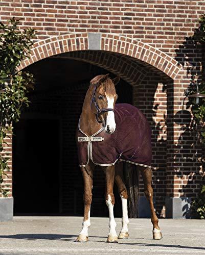 Horseware Fliegendecke Amigo NET Cooler Farbe Pferdezubehör fig/Navy/tan, Größe 140
