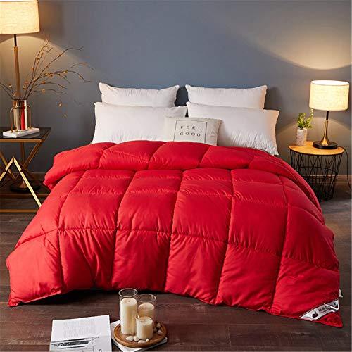 BEDSETS Bettdecke 200x200 cm 4 Jahreszeiten, Oeko-Test Zertifiziert Atmungsaktive Schlafdecke, Super Weiche Kuschelige Steppdecke (Rot,180x220cm2kg)