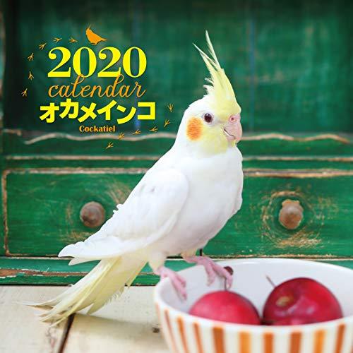 2020年 大判カレンダー オカメインコ