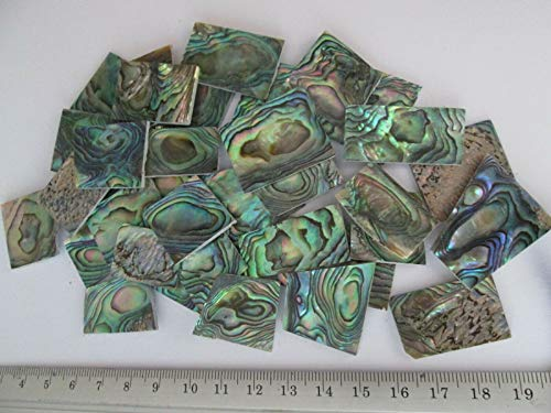 1- Ounce ~ Green Paua Abalone Shell Blanks, Inlay Material. 0.06' Thick/Guitar