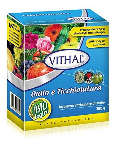 Vithal 8023868005910 Idrogeno carbonato di Sodio Contro oidio e ticchiolatura per Agricoltura Biologica in Confezione da 350 Grammi