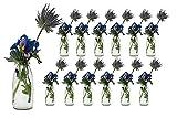 Casavetro - 12 Botellas de Cristal en Estilo rústico para Decorar mesas, jarrones de Cristal, Vidrio, Blanco, 12 Stück
