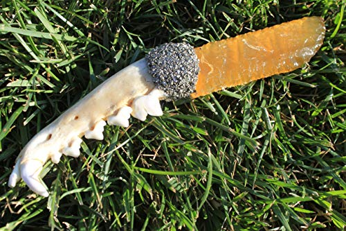 7-3/4' Flint Knapped/Knapped Yellow Fiber Optic Glass Knife Blade Using Pressure Flaked Domed Knife Blade Dagger Point Hafted On Coyote Jaw Bone Handle w/Imitation Sinew