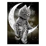 Moon Cat 5D DIY Diamond Painting Kits for Adults Full Drill Crystal Rhinestone Embroidery Cross Stitch Arts Craft Canvas Wall Decor, 30 x 40 cm