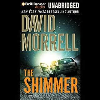 The Shimmer audiobook cover art