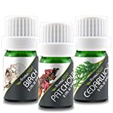 Aroma2Go Essential Oils Set, 100% Pure Undiluted, Therapeutic Grade,...
