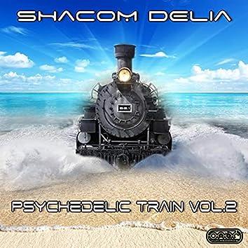 Psychedelic Train, Vol.2