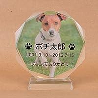Pet&Love. ペットのお墓 ガラス製 全体カラー お客様のペット写真刻印 (犬猫その他ペット全て対応可)オーダーメイド メッセージ変更可能 (2L(高さ20cm))