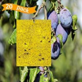 20 pcs Dual-Sided Yellow Sticky Traps for Flying Plant Insect Like Fungus Gnats