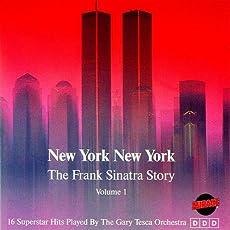 New York New York - Instrumental Cover
