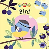 Bird (Tales from Nature)