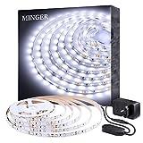 Minger Tira LED 5M Blanco Frío, Tiras LED Regulable Iliminición 2835 300 LED 6500K No Impermeable, Luces Kits Flexible para Armario, Dormitorio, Muebles, Cocina