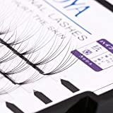 Premade Volume eyelash Extensions 5D Individual Cluster Lashes 0.07mm B Curl Mink Lashes(5D) (12mm)
