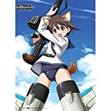 GE Animation Great Eastern GE-77586 Strike Witches - Yoshika Fabric Wall Poster