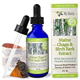 Maine Chaga & Birch Bark Extract, Natural Source of Betulin from White Birch Bark, Wild Harvested Chaga, Double Extracted Tincture