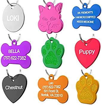 Dr. Fremont's Personalized Custom Pet ID Tag for Dog Cat